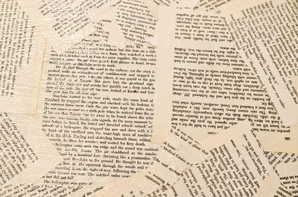 Writing 5 Paragraph Essay Graphic Organizer
